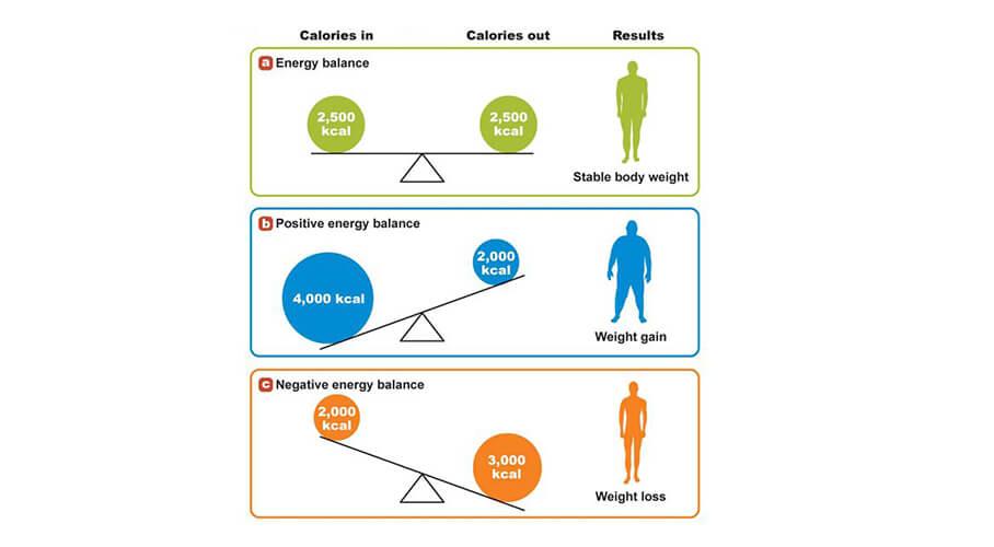 energy-balance-chart